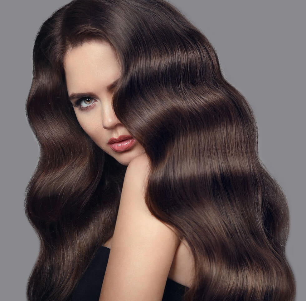 Euro collection Brunette Bombshell remy virgin hair matches Color 4 Dark Chocolate Brown Clip In Hair Extensions