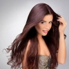 Euro Collection Deep Auburn Color #33 Clip In Hair Extension
